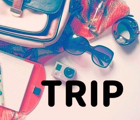 【バスツアーレポ】コスパ最高!1泊2日たっぷり詰め込み♪京都・天橋立・伊勢湾巡りツアー