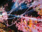 【お台場】未来の遊園地!?デジタルアートミュージアム「チームラボ ボーダレス」は大人も200%楽しめる新感覚スポットでした!